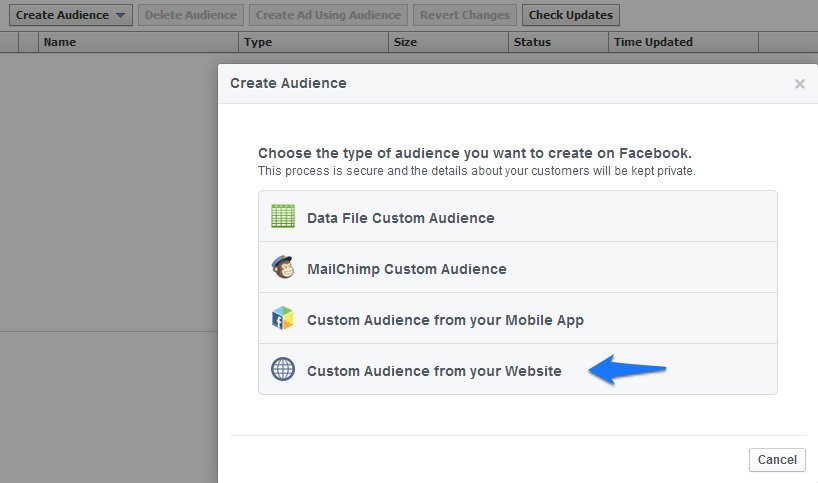 Custom audience form you website