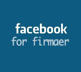 facebookforfirmaer